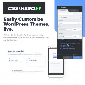 CSS Hero Subscription - Lifetime Pro